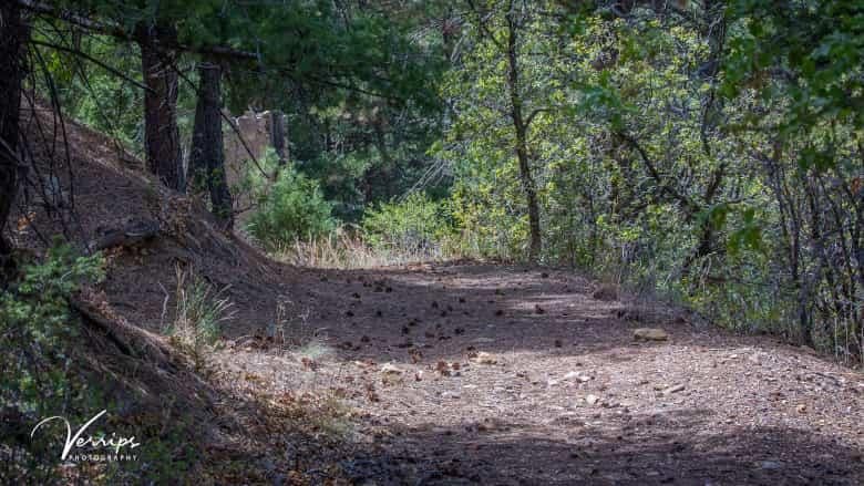 NRA Whittington Center Hiking Trails